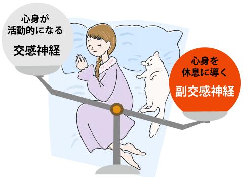 副交感神経が動作し安眠できる様子